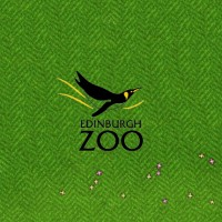edinburgh-zoo-featured-image-big